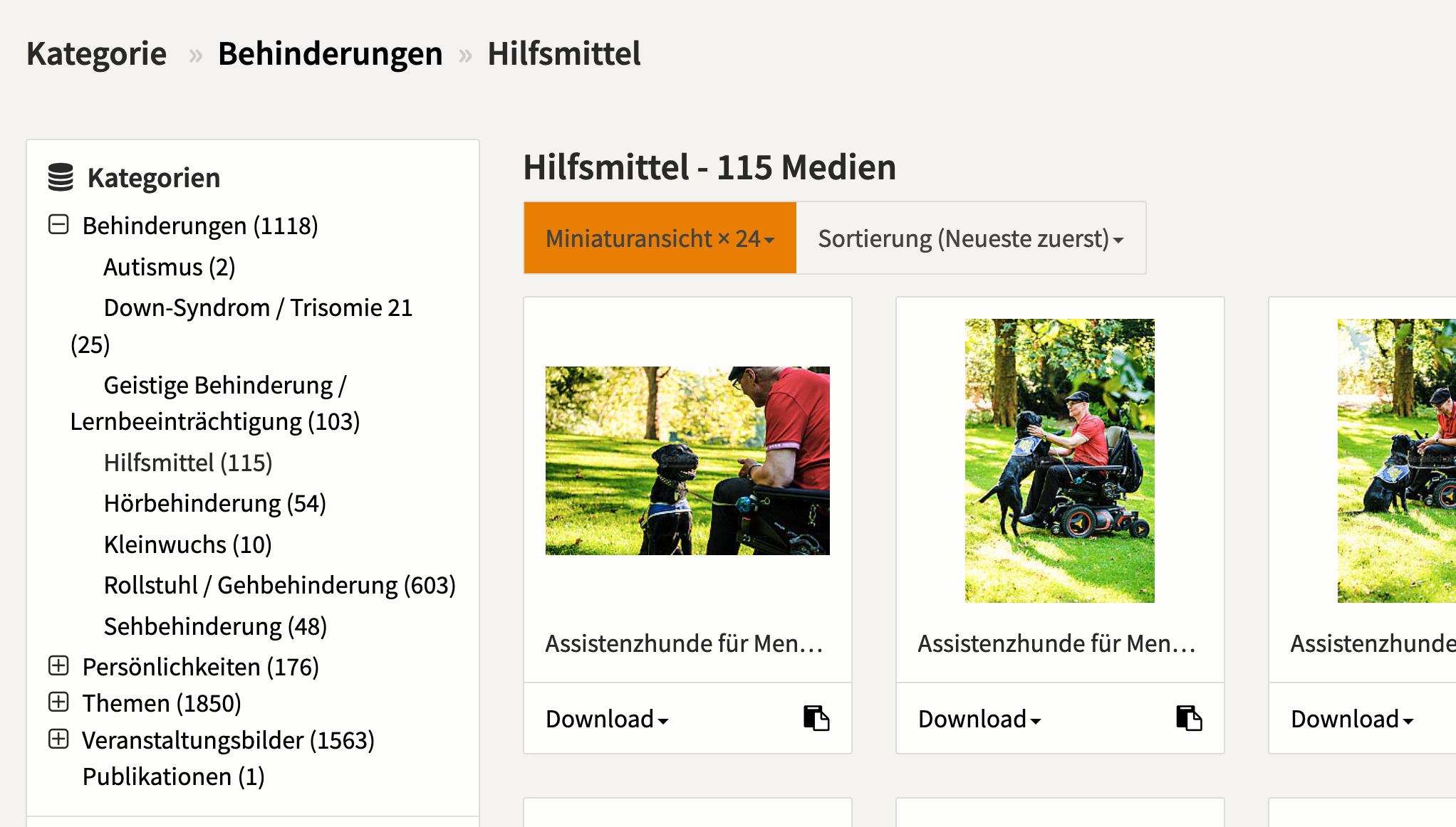 Screenshot von der Kategorie-Seite von Gesellschaftsbilder.de